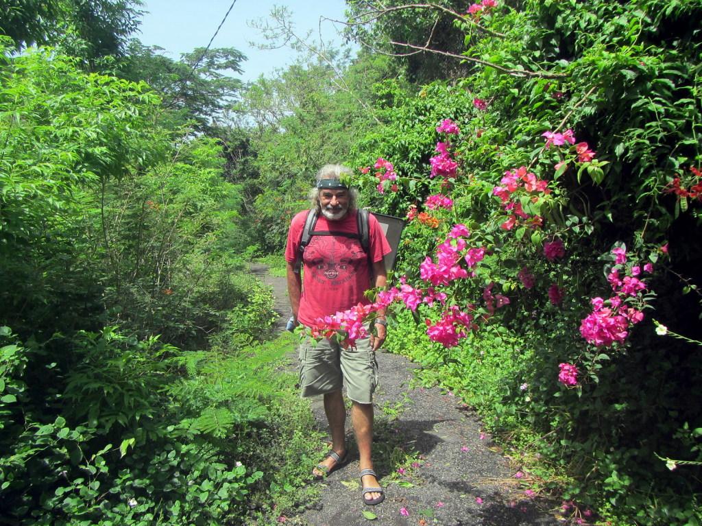 den idyllischen Weg entlang