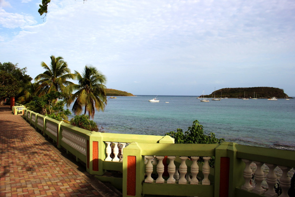 Vieques 007