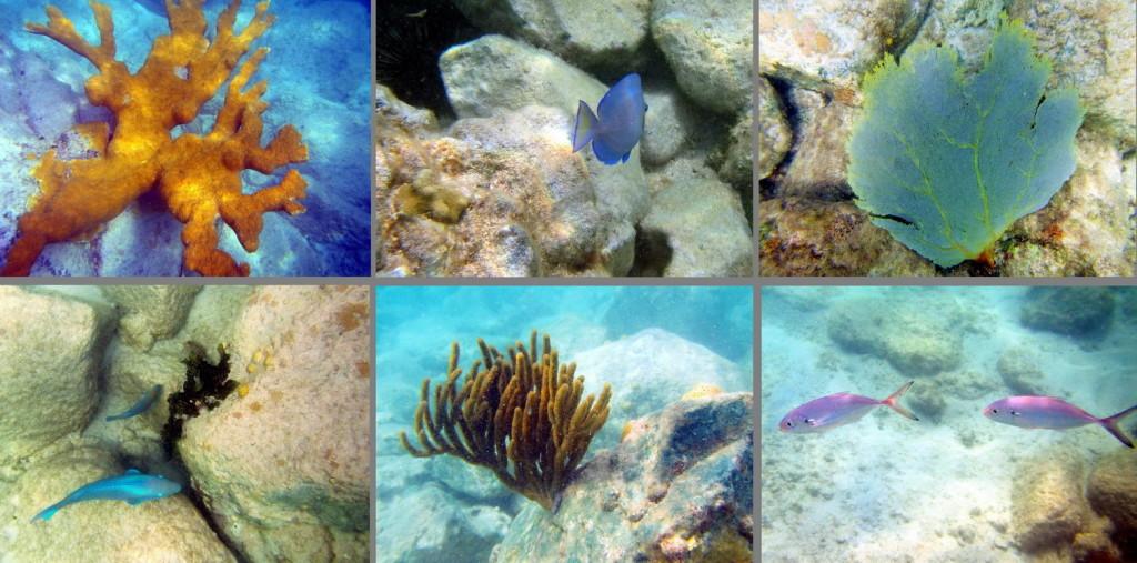 Unterwasser Montage