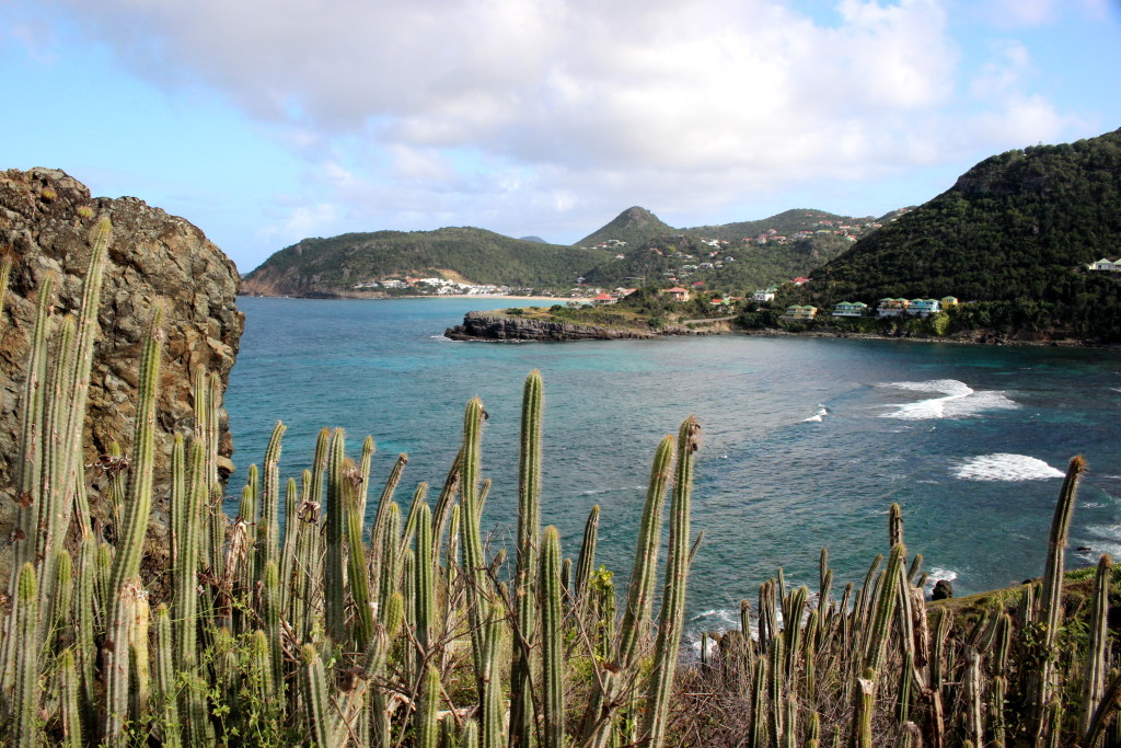 anse colombier (30)